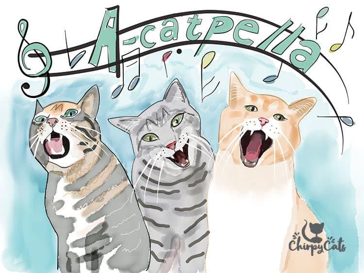 acatpella cat sounds
