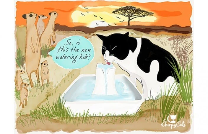 cat drinking water funny cartoon