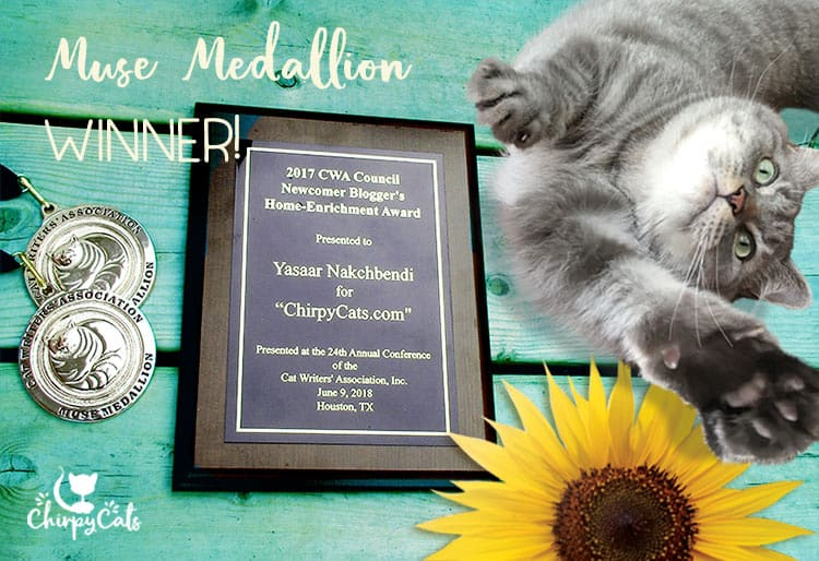 Chirpy Cats wins Muse Medallions at the CWA conference