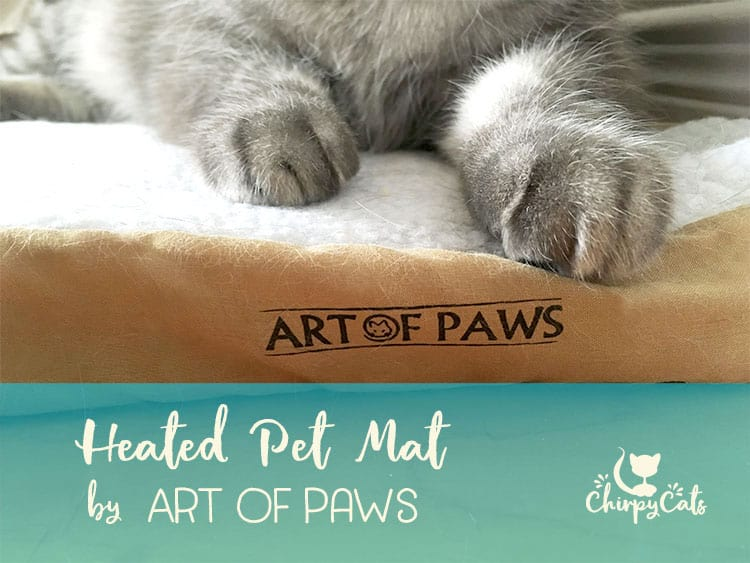Art of Paws heated cat bed