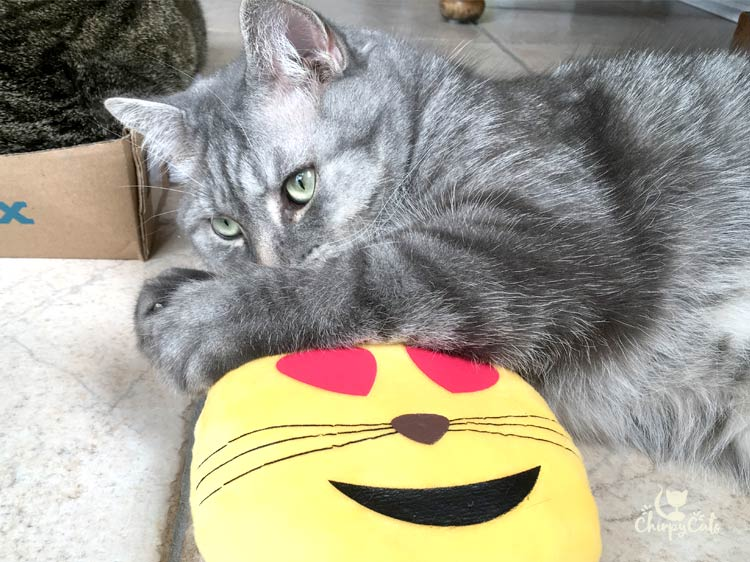 KitNipBox emoji pillow