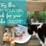 Turn your catio into a cat paradise with this easy fountain hack