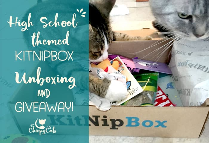 September KitNipBox cat toys