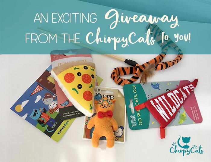 Chirpy Cats September KitnipBox highschool giveaway