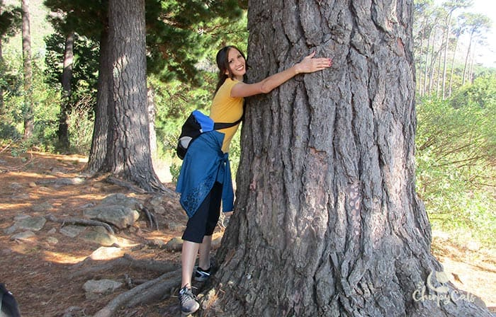 yas the tree hugger