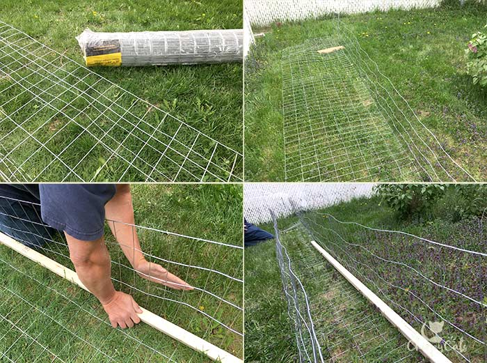 Make an outdoor cat tunnel for your cat
