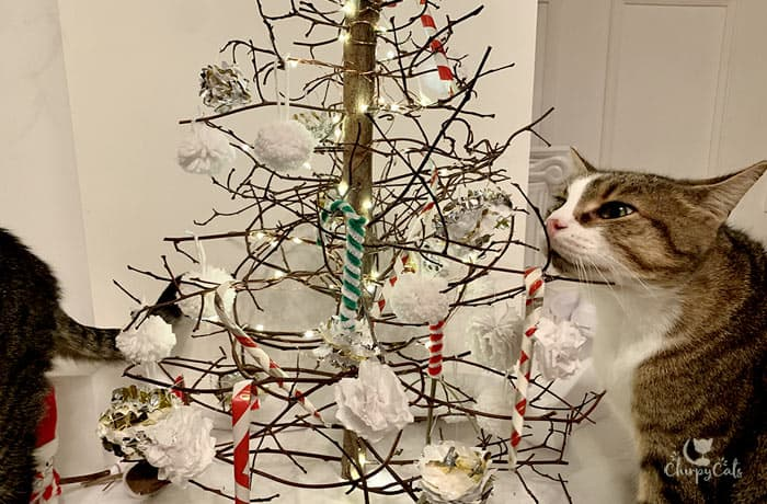 cat sniffing his own Christmas tree decorated with catnip candy canes and other DIY cat toys