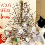 How To Create an Enrichment Christmas Tree For Your Cat's Delight!