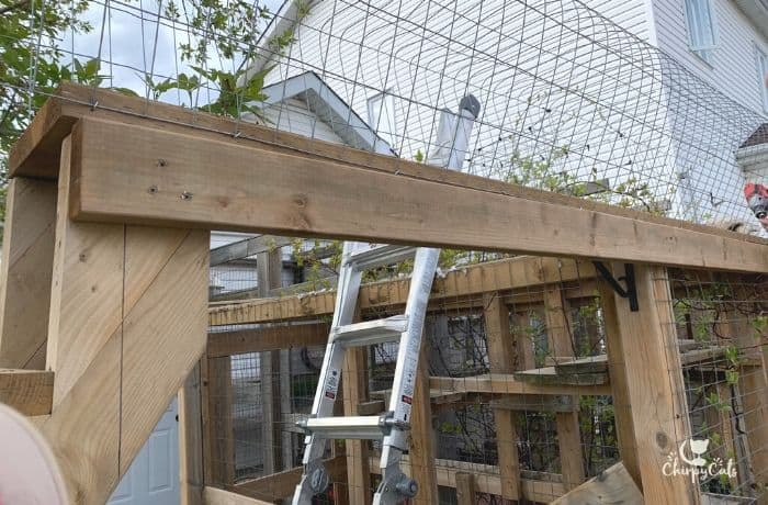building an outdoor cat bridge  and attaching the walkway