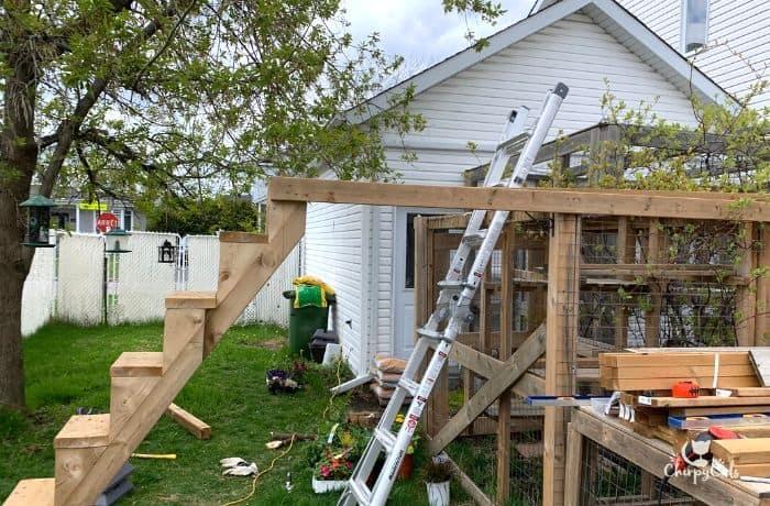 building a cat bridge next to an existing catio