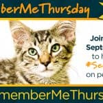Spread the Love of Rescue Pets on Remember Me Thursday #SeeTheLight